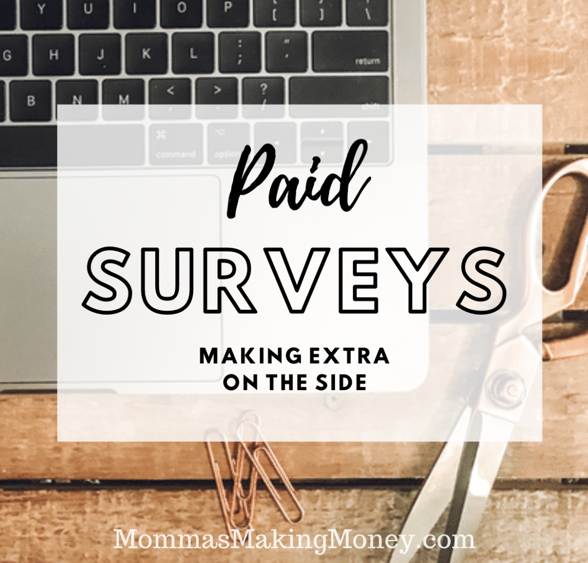 Paid Surveys-Making extra on the side