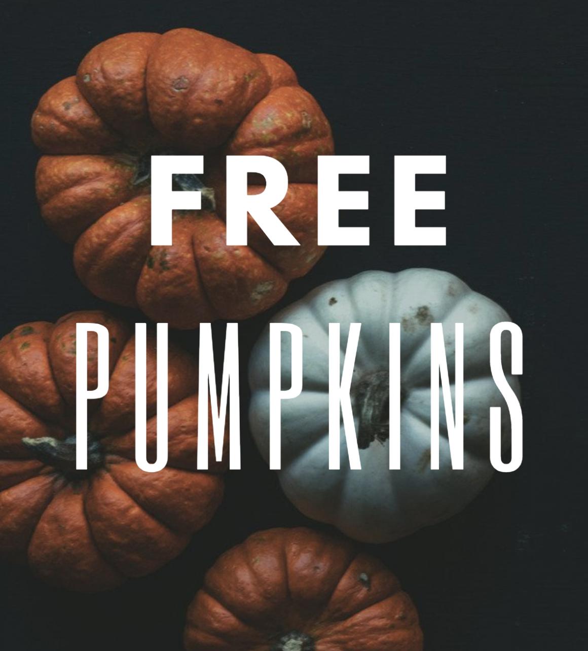Save money on Pumpkins